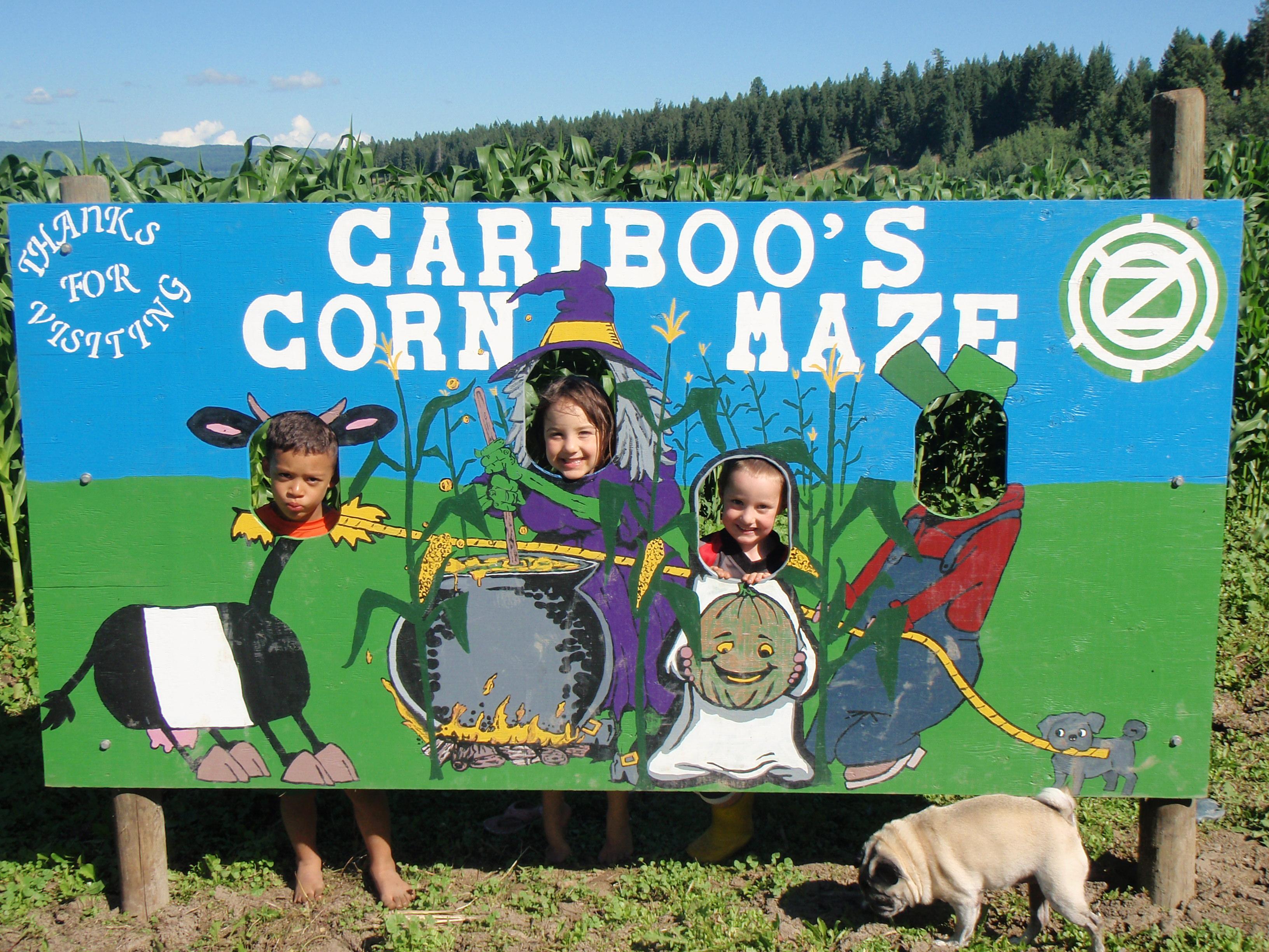 Cariboo's Corn Maze Sign
